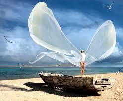 wingssoul