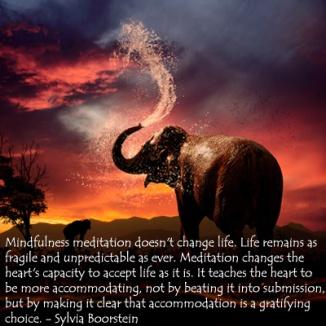 mindfulness-meditation-elephant-SilviaBoorstein